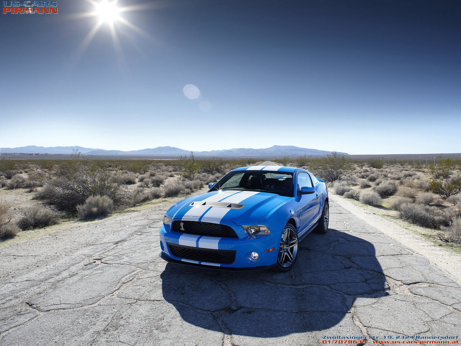 2010 Shelby GT 500