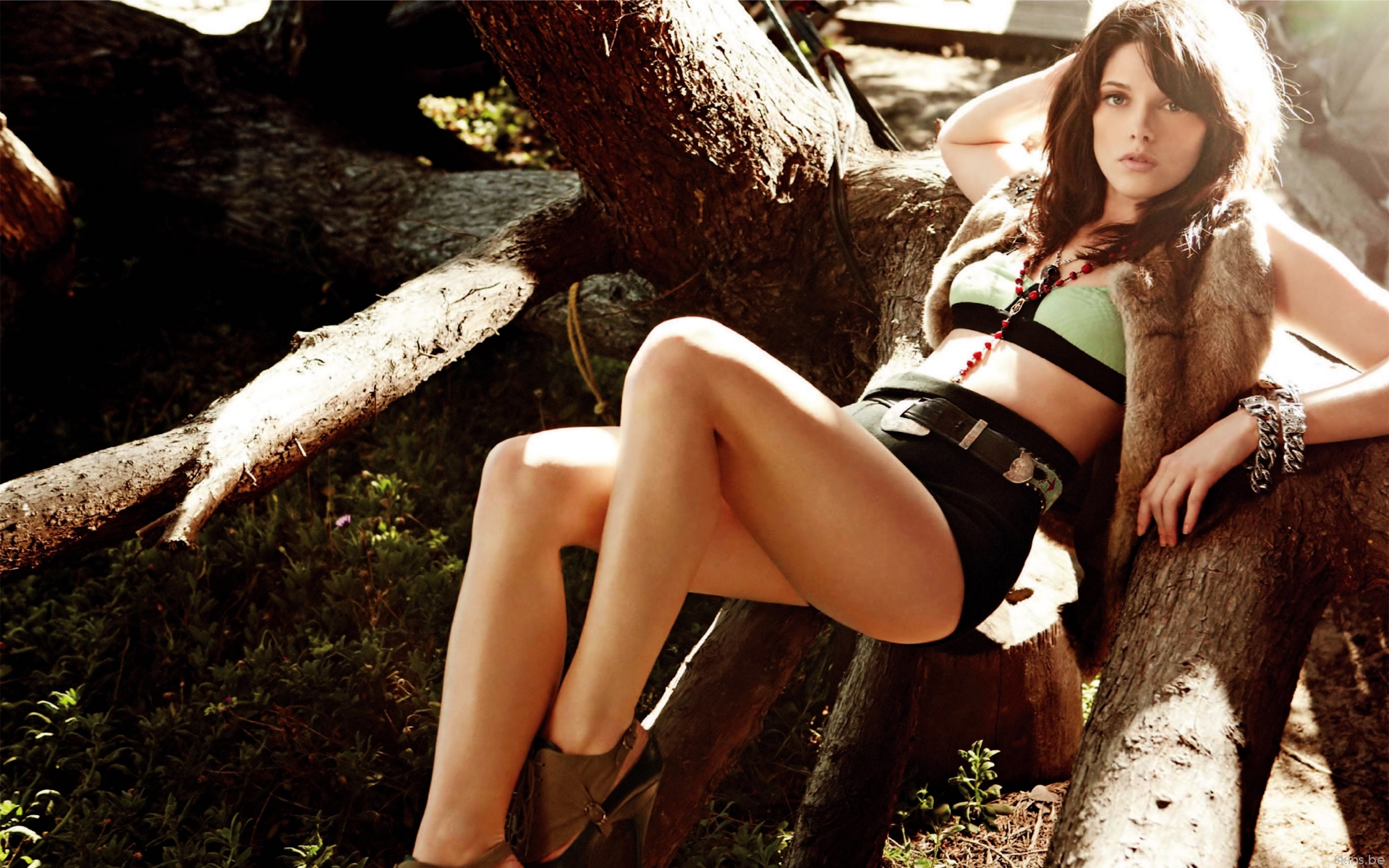 Ashley Greene actress model brunettes women females girls sexy babes cleavage legs