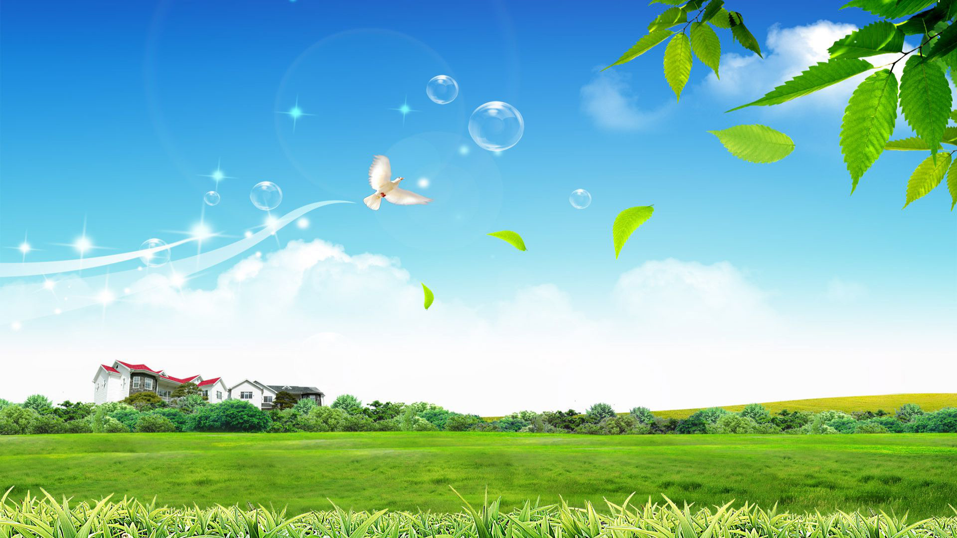 Bubbles and dove over the field