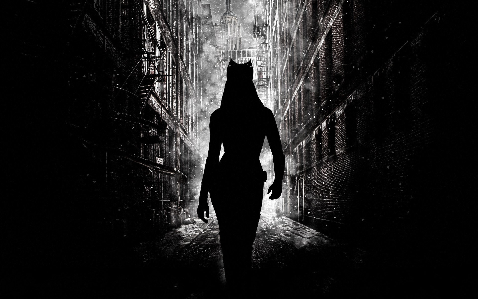 Catwoman shadow