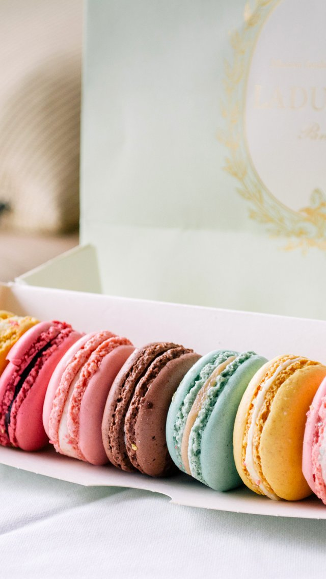 Cookies Macaron Colorful Dessert Box