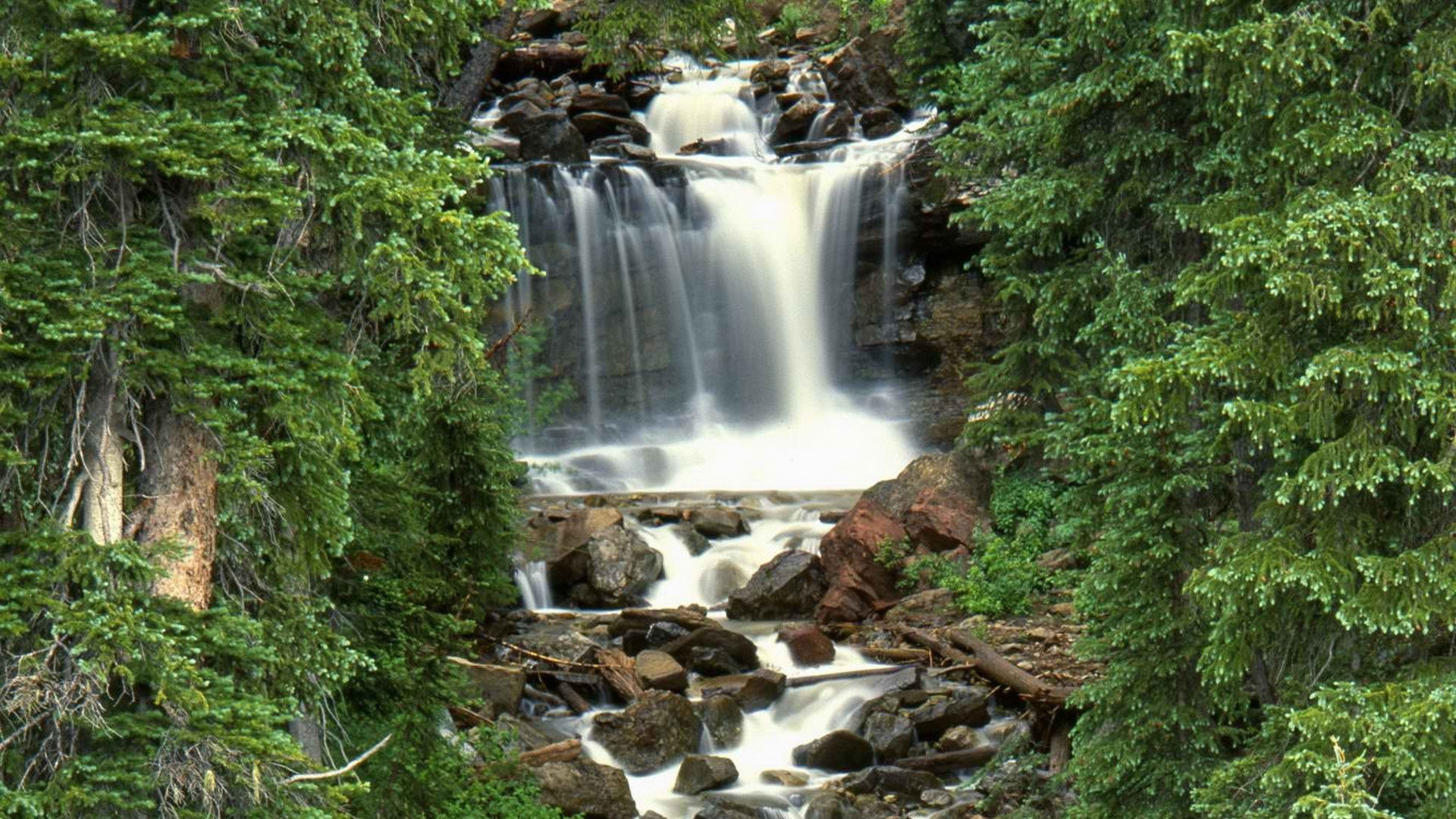 forests national Colorado waterfalls