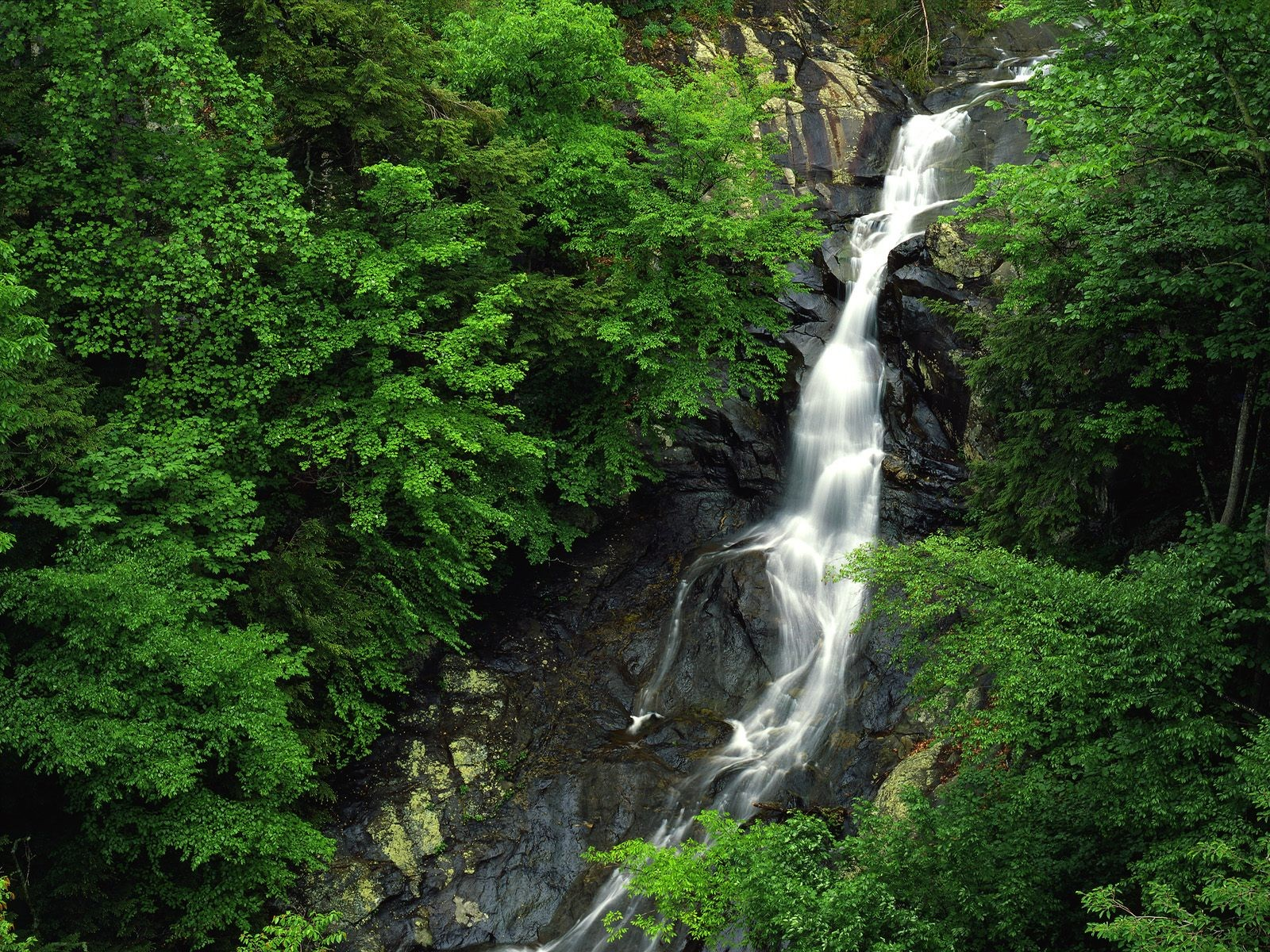 green nature forests waterfalls exotic