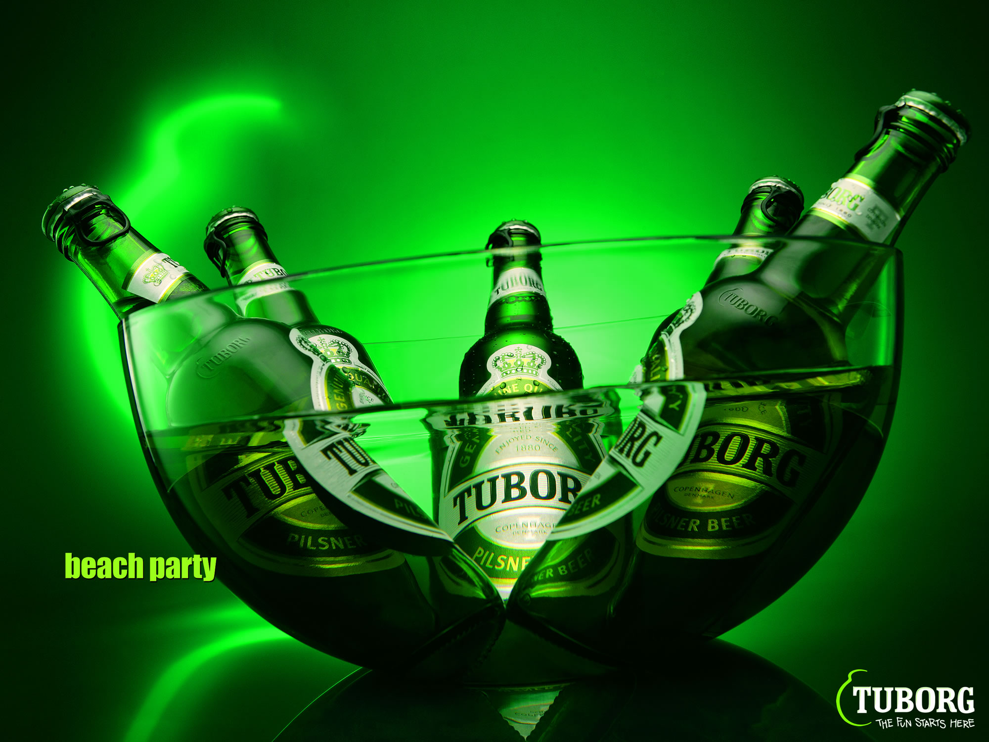 Green Tuborg Beer Alcohol