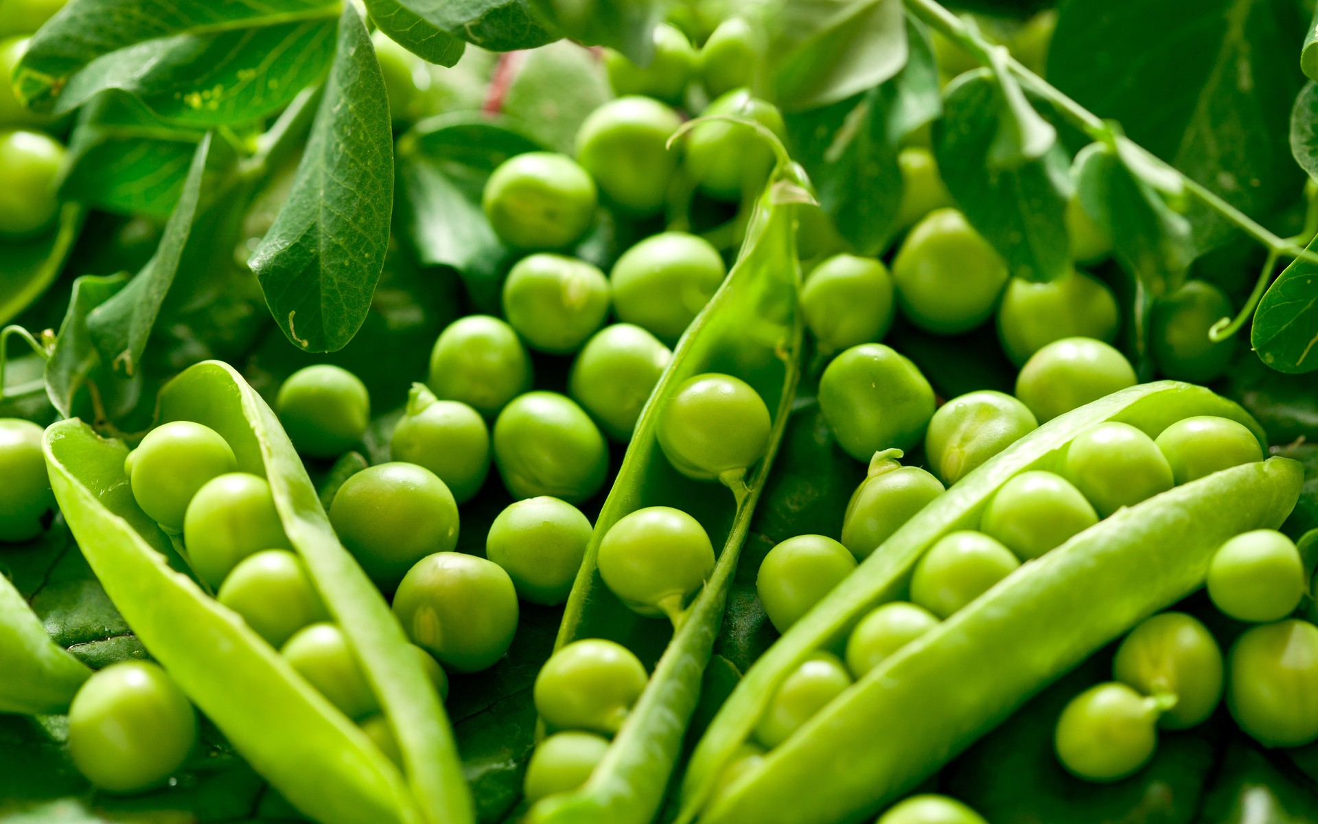 green vegetables peas