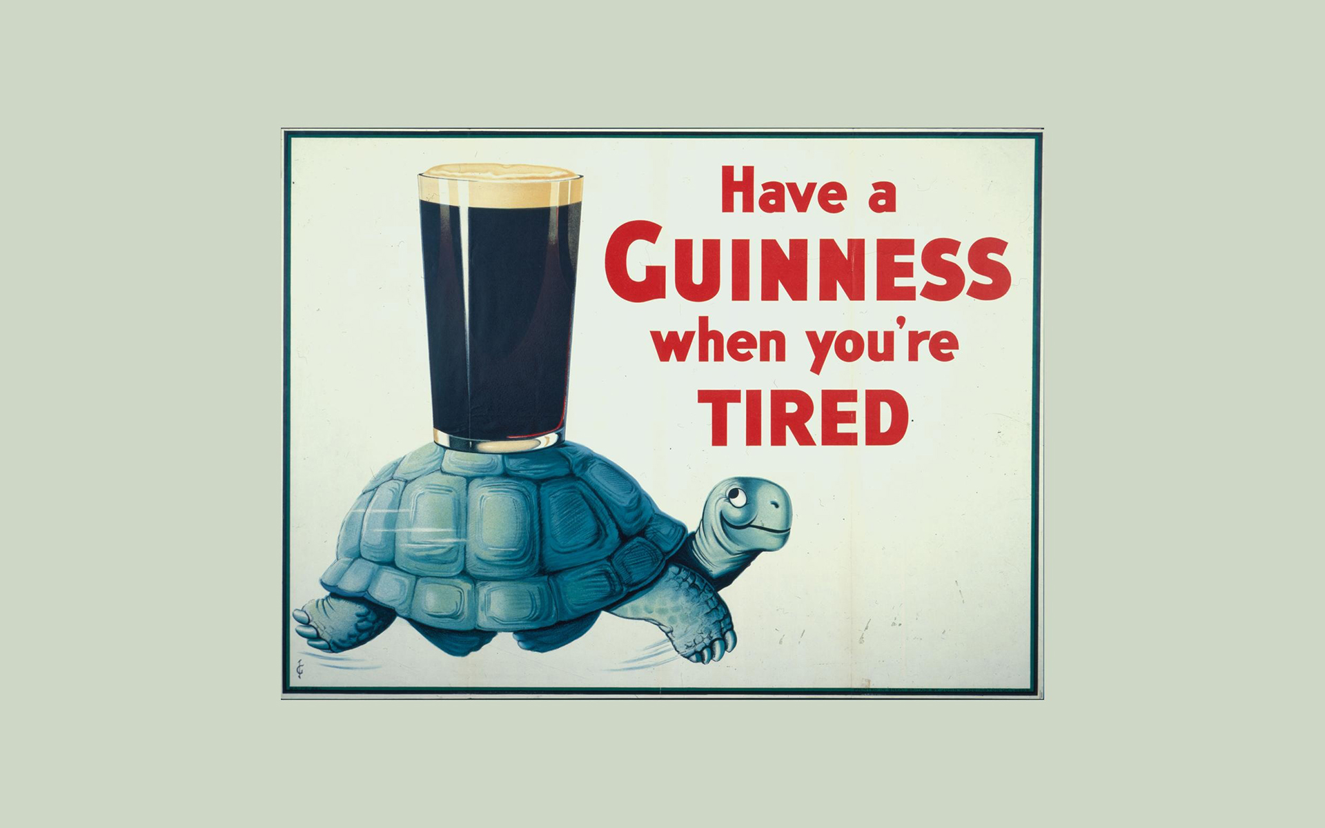 Guinness Turtle Tortoise Beer Alcohol texts