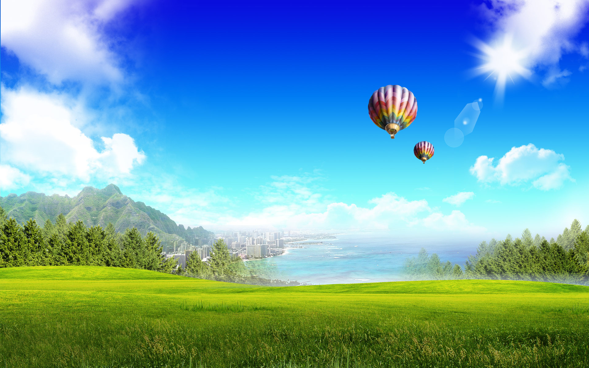 Hot air balloons over the meadow