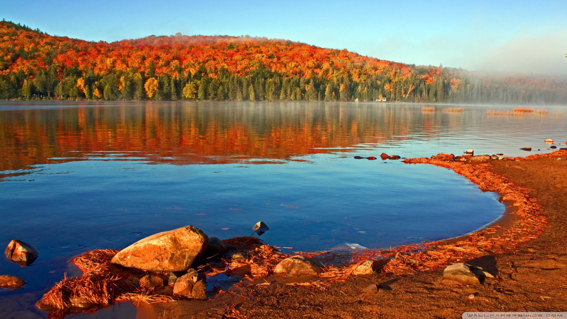 Lake shore in the fall