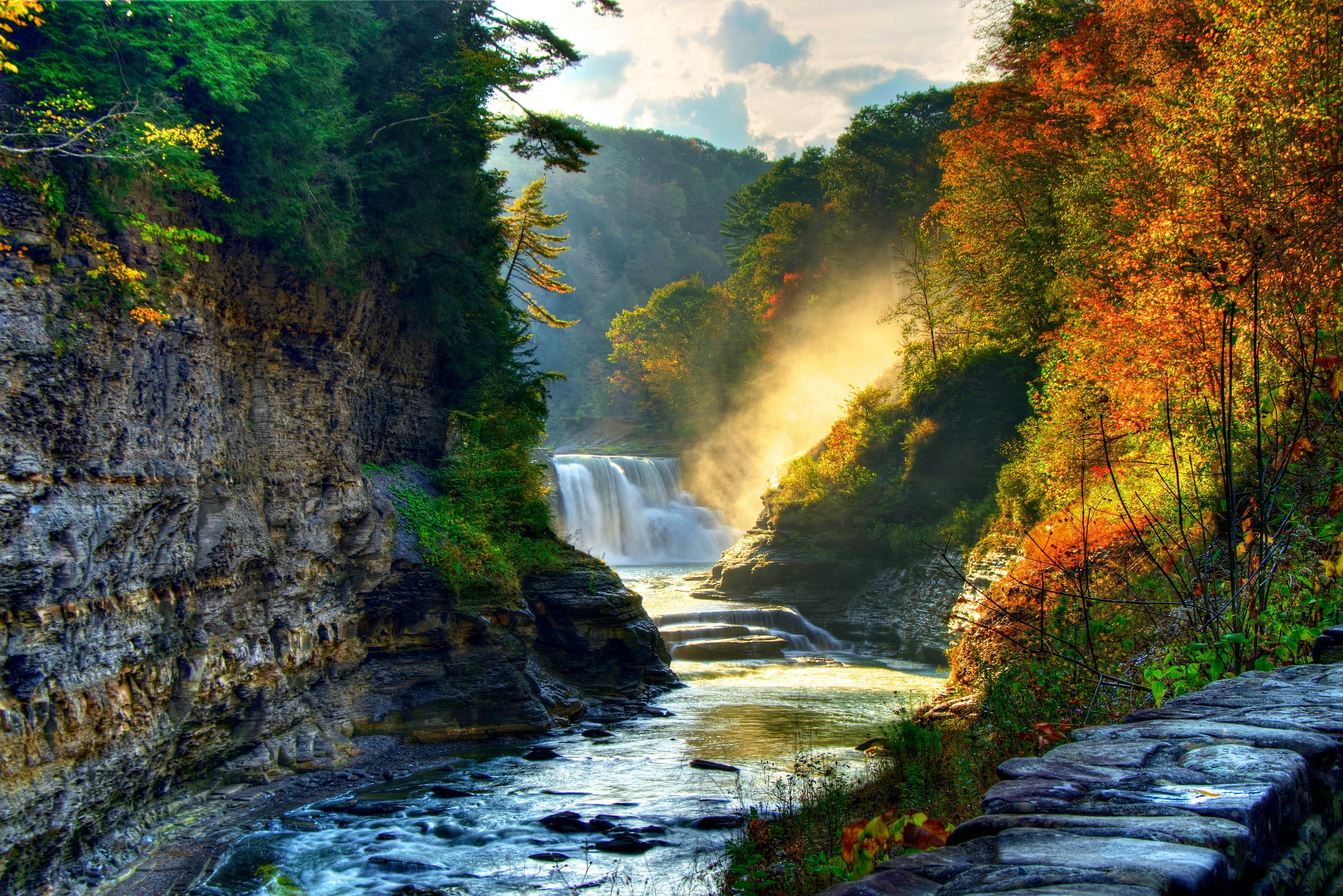 landscape nature tree forest woods autumn river waterfall