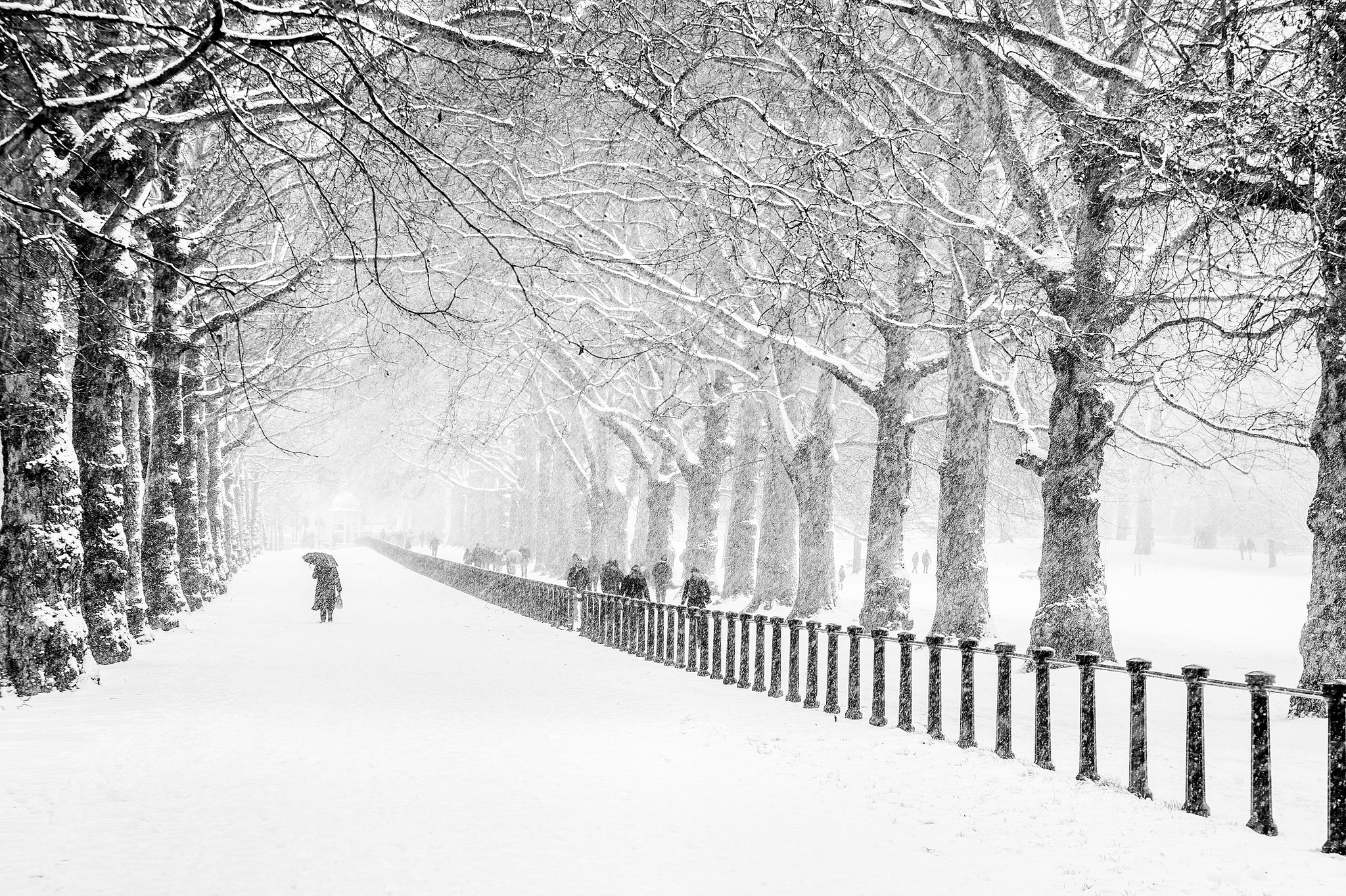 london winter snow tree road