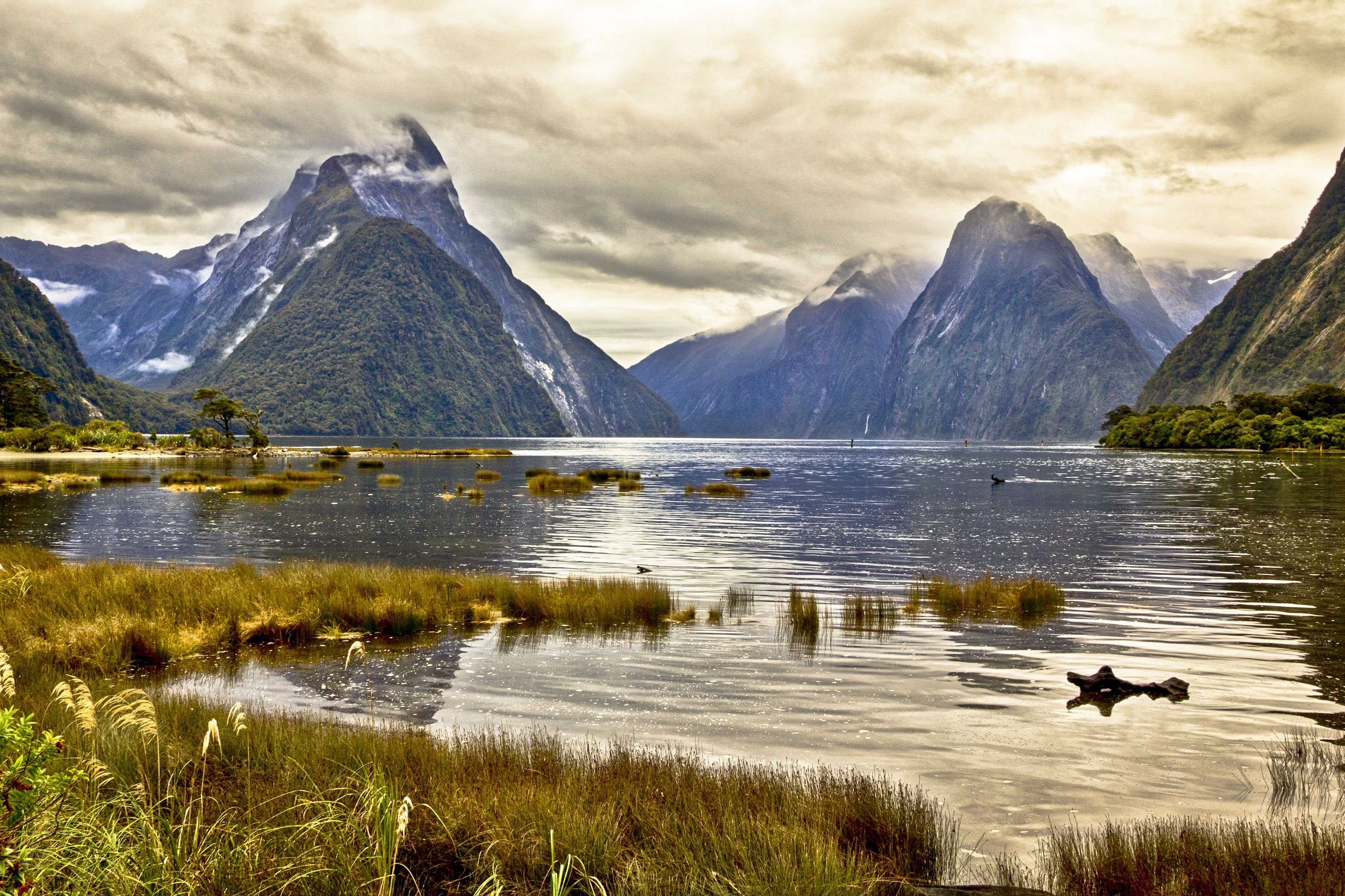 Milford Sound New Zealand pond mountain landscape