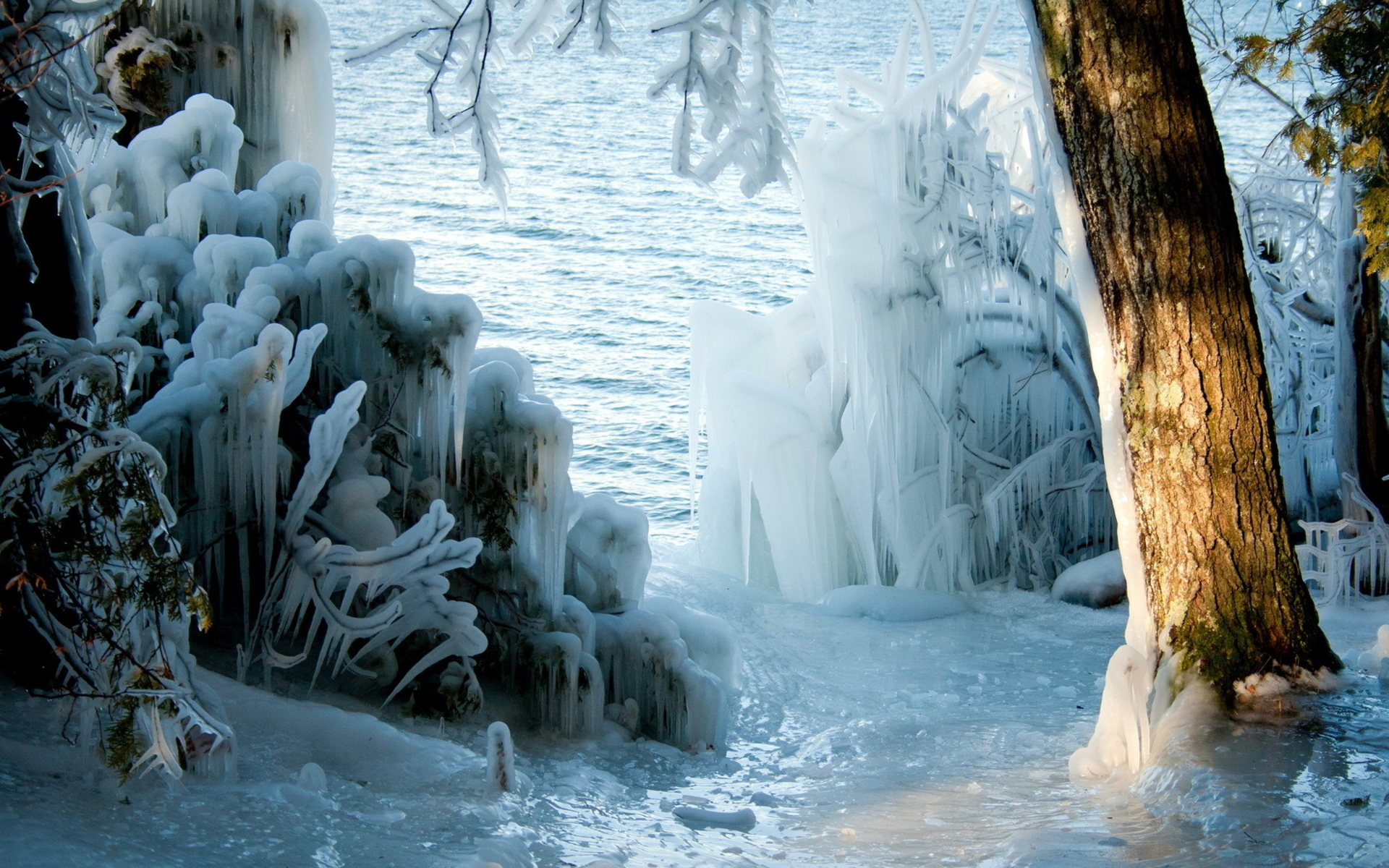 nature landscapes lakes trees forest wood ice storm winter seasons sunlight freezing