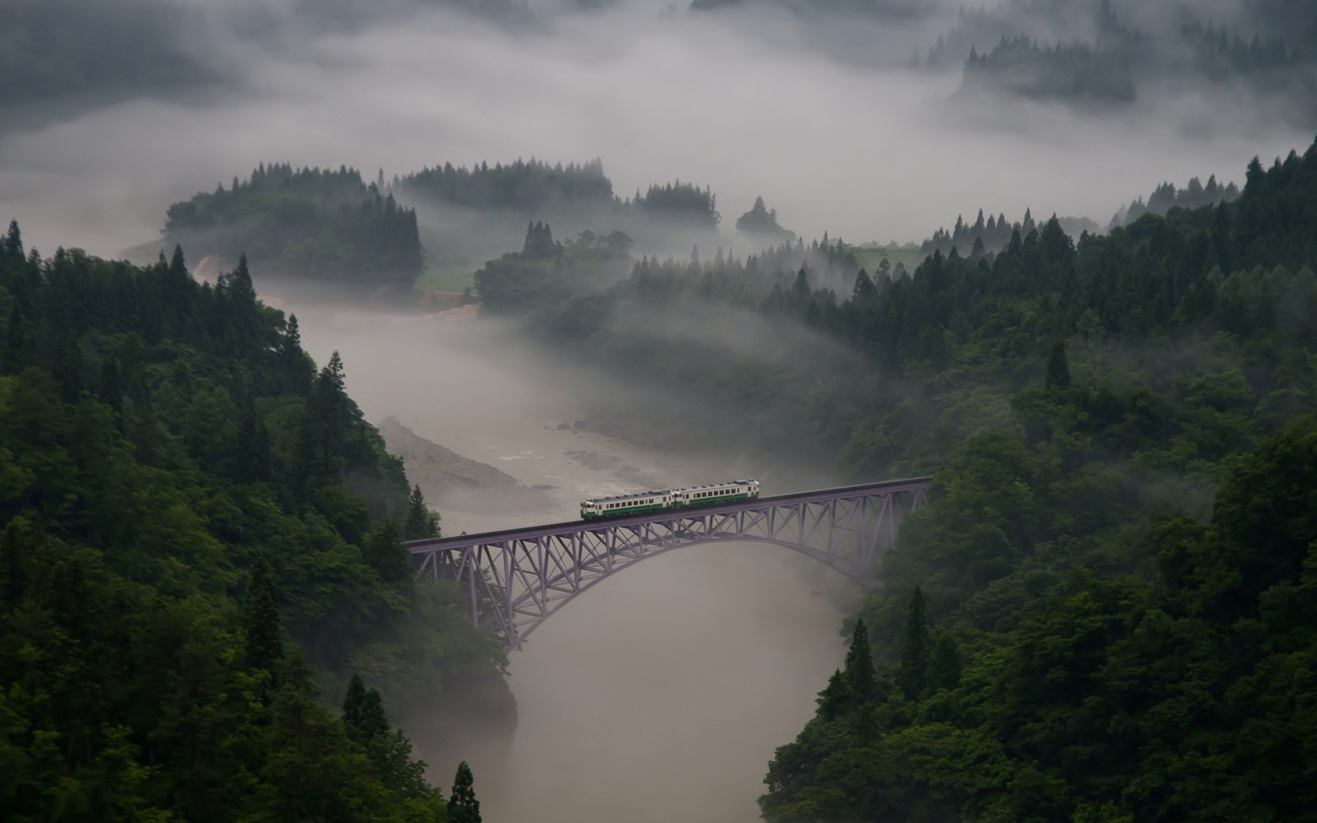 nature mountain forest landscape fog national geographic ultrahd 4k wallpaper