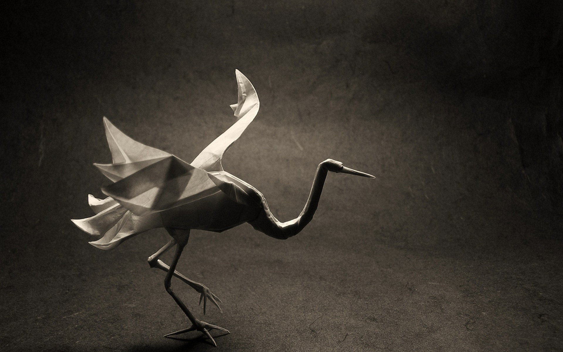 Origami Bird Crane Art Photo