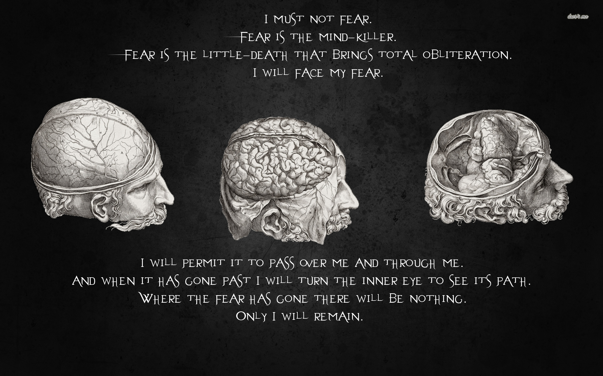 Quote on fear