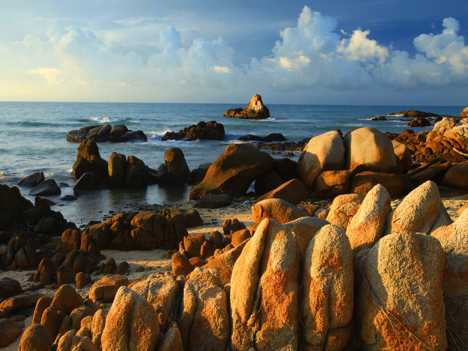 Rocky Shore Pictures