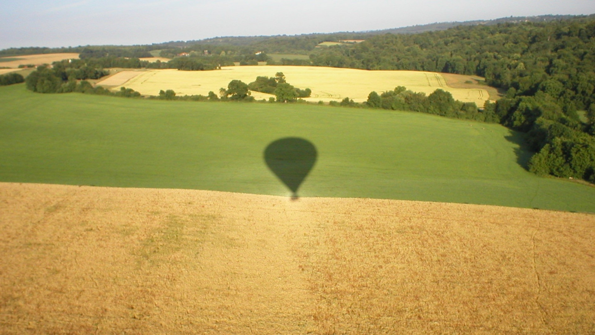 Shadow of the hot air balloon on the field