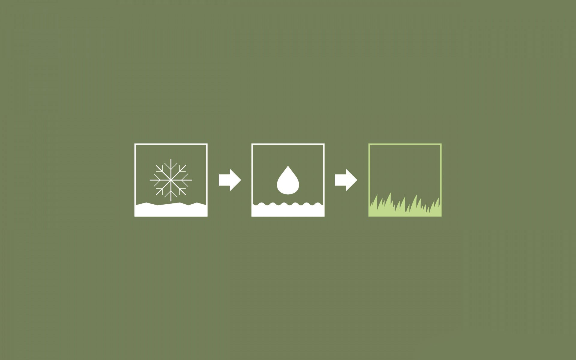 Snow, rain and grass