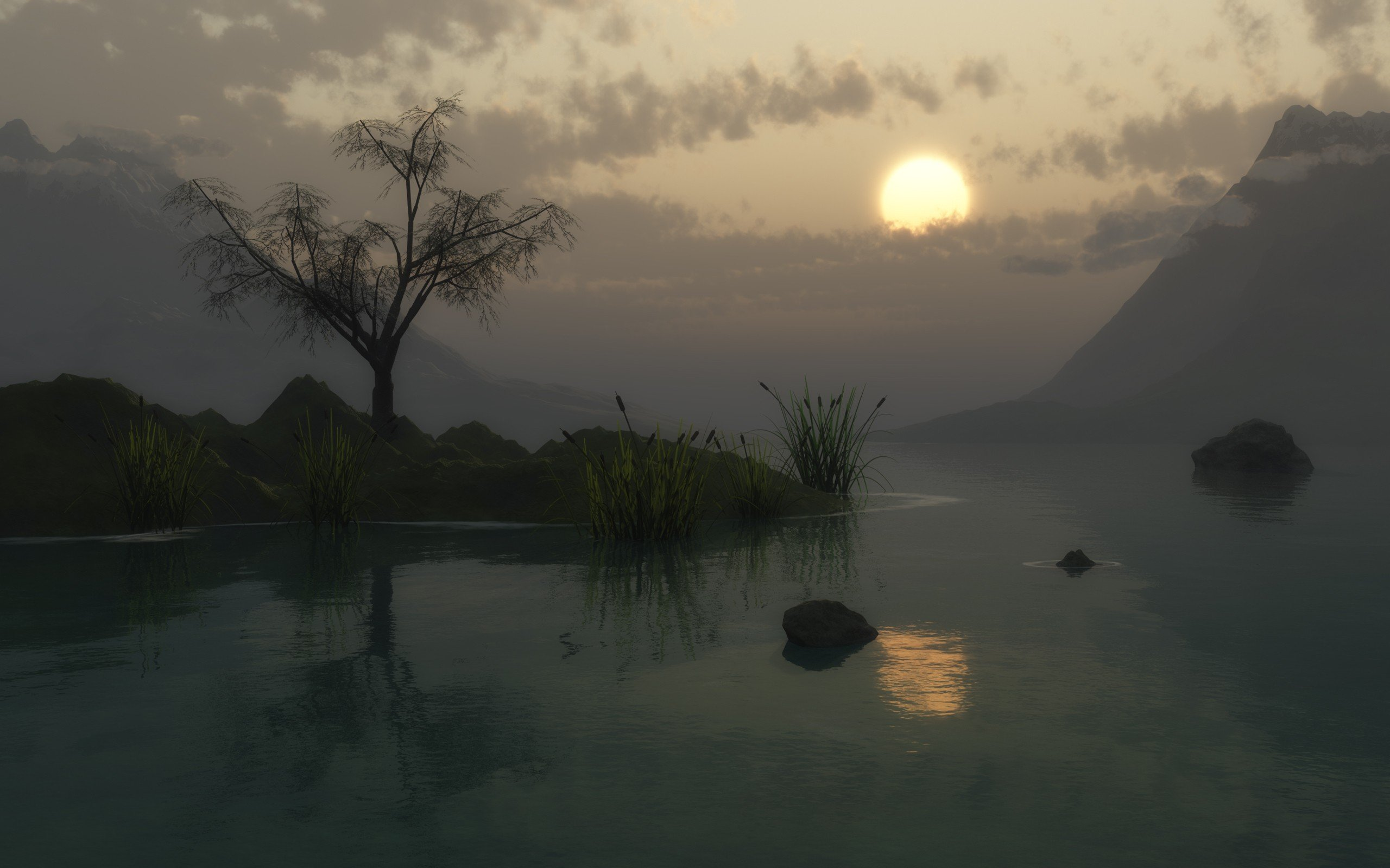 sunset nature 3D renders swamps