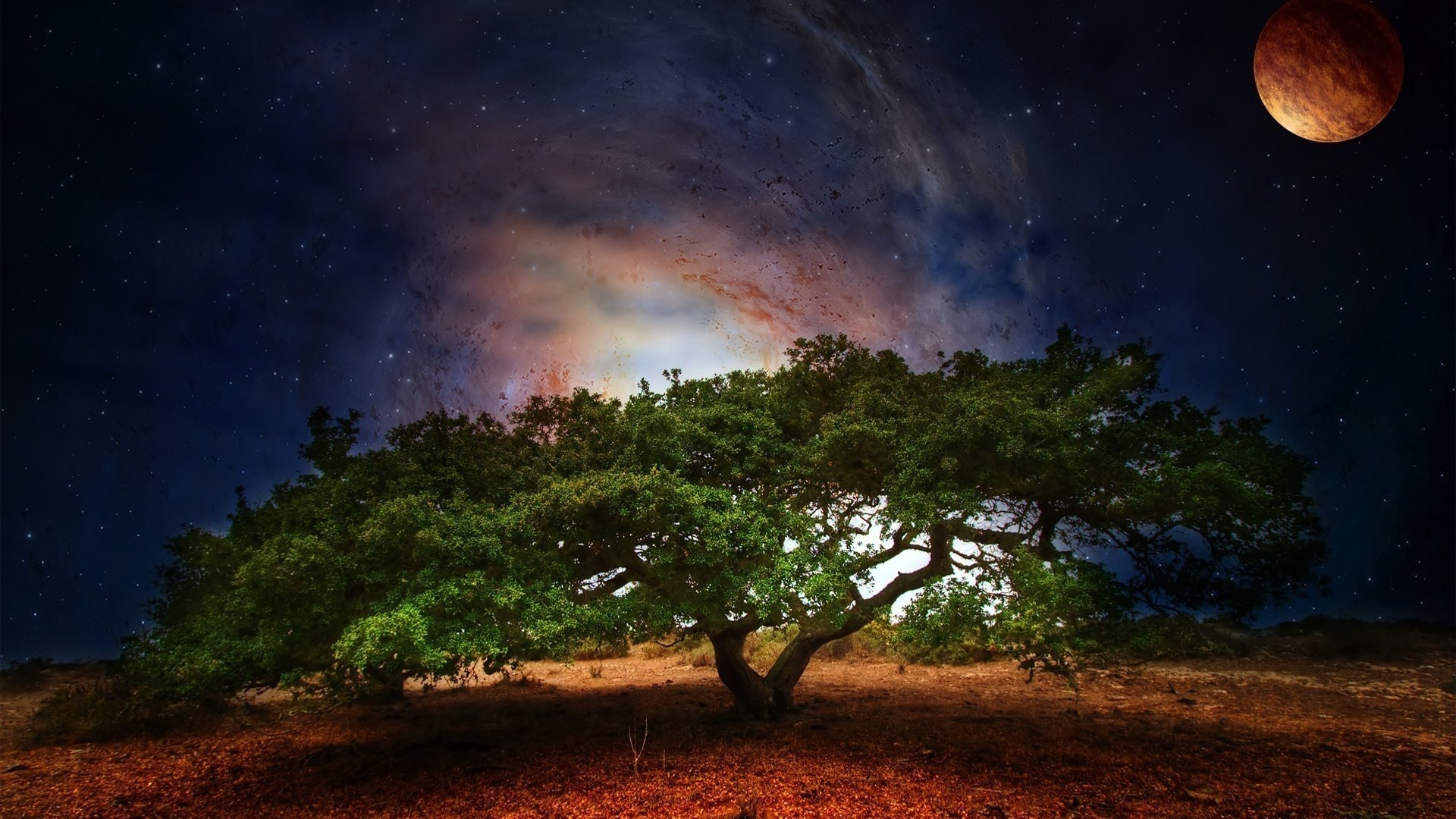 tree art planet light fantasy sci-fi galaxy sky stars