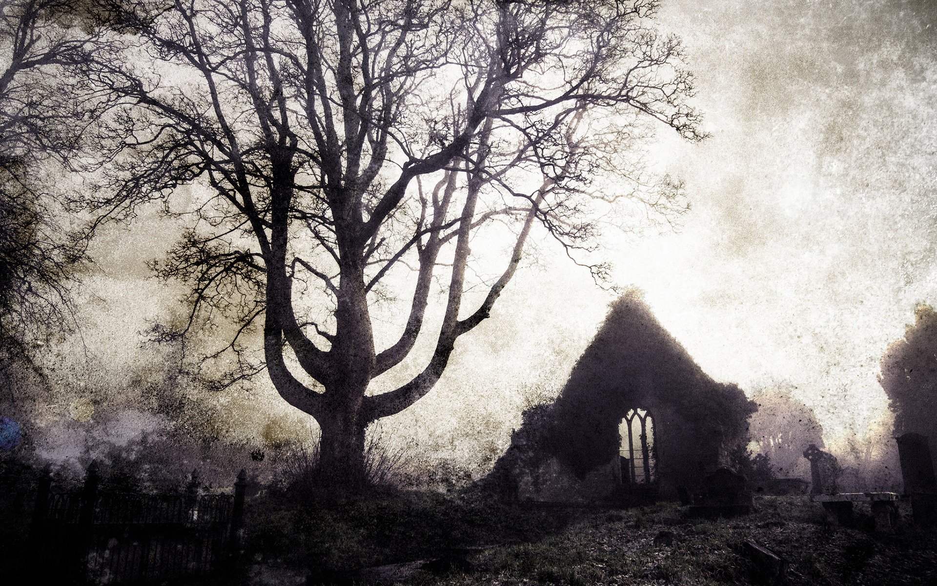 Tree Cemetery gothic buildings ruins cross landscapes
