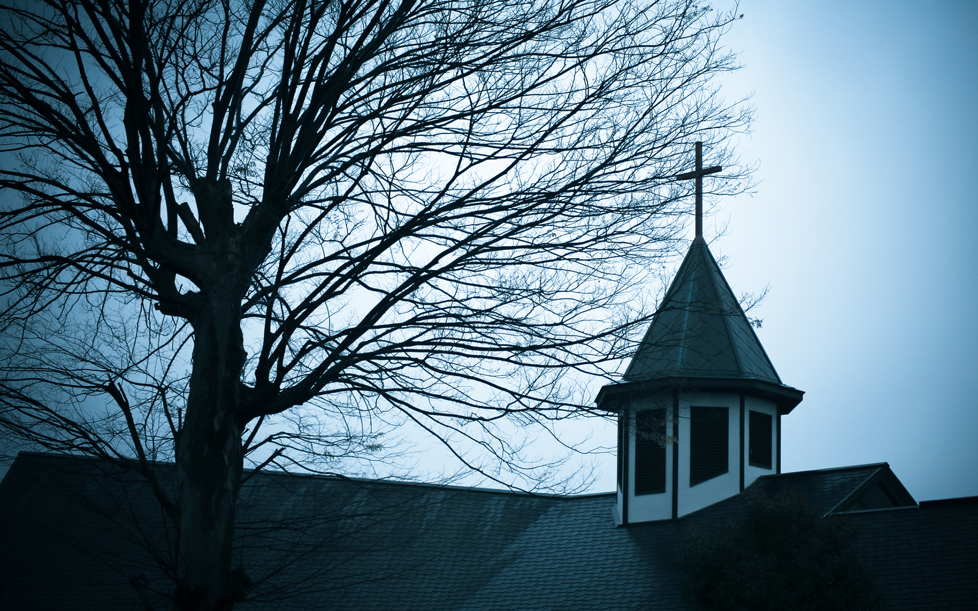 Tree Church Cathedral Steeple