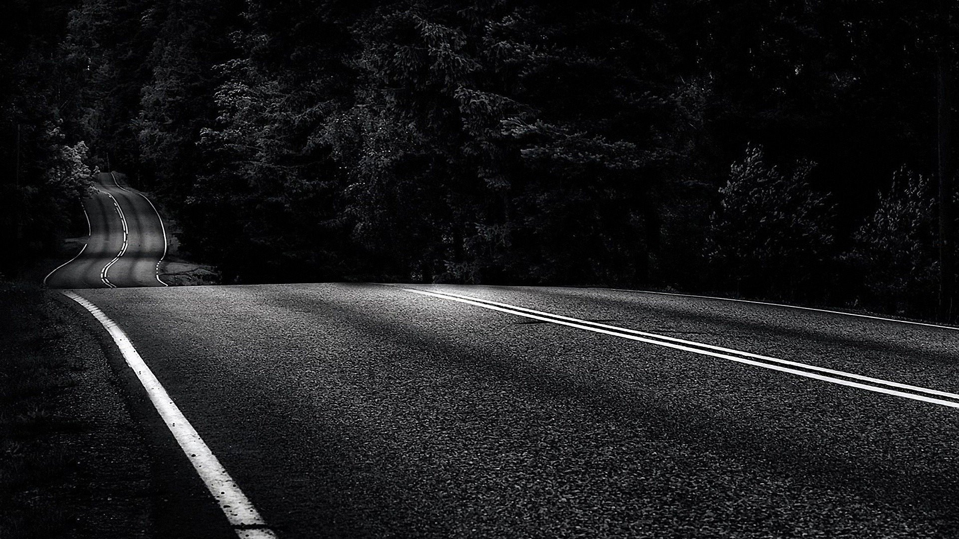 trees roads monochrome asphalt