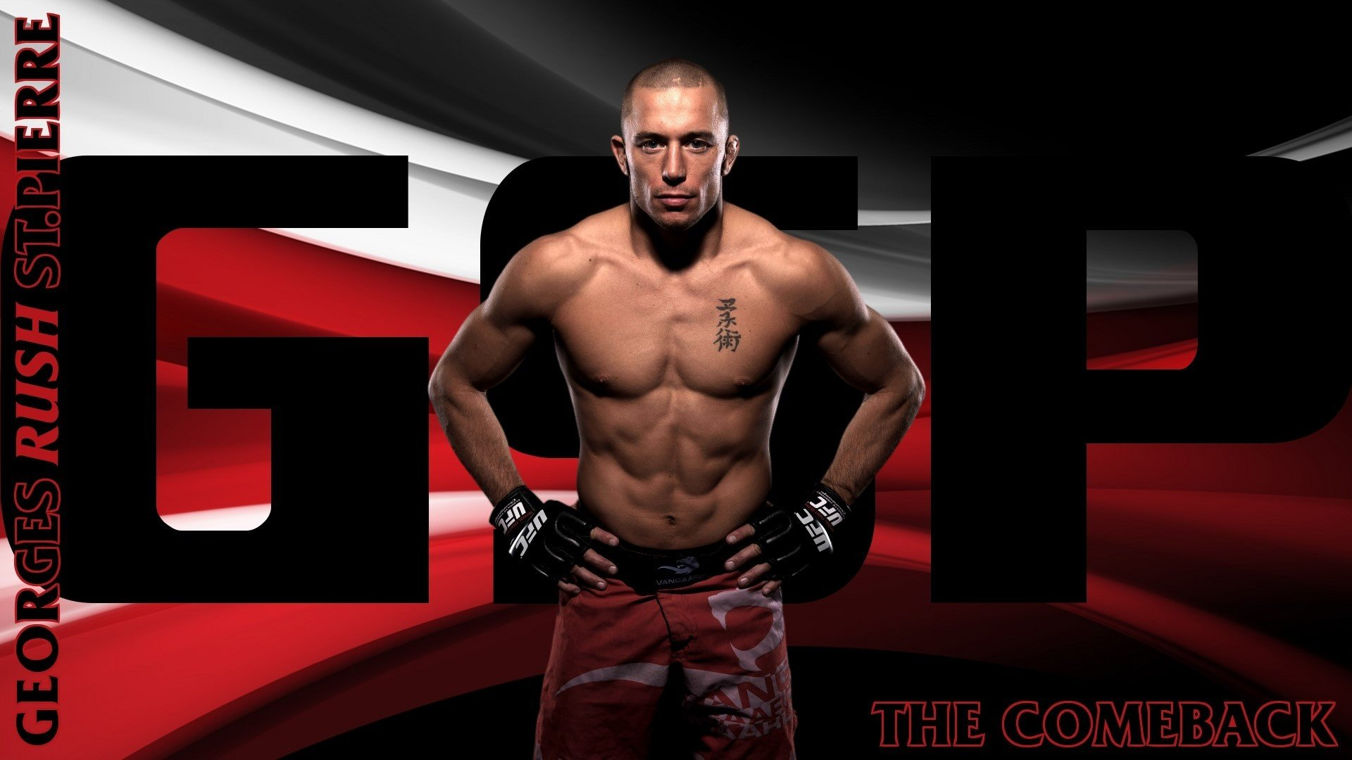 ufc georges st-pierre mma fighter martial