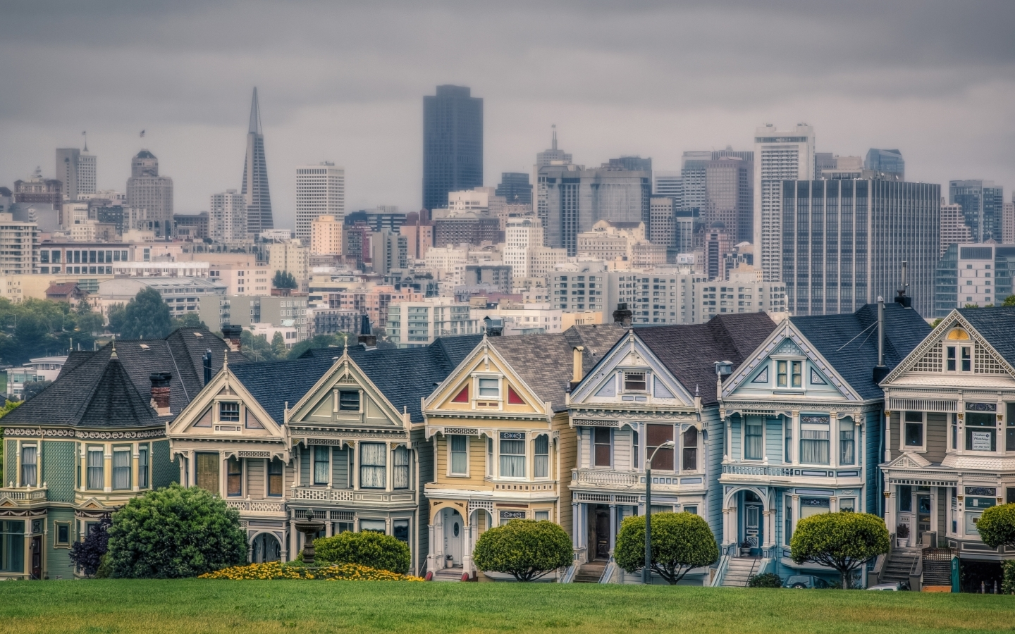 USA California San Francisco Alamo Square Houses