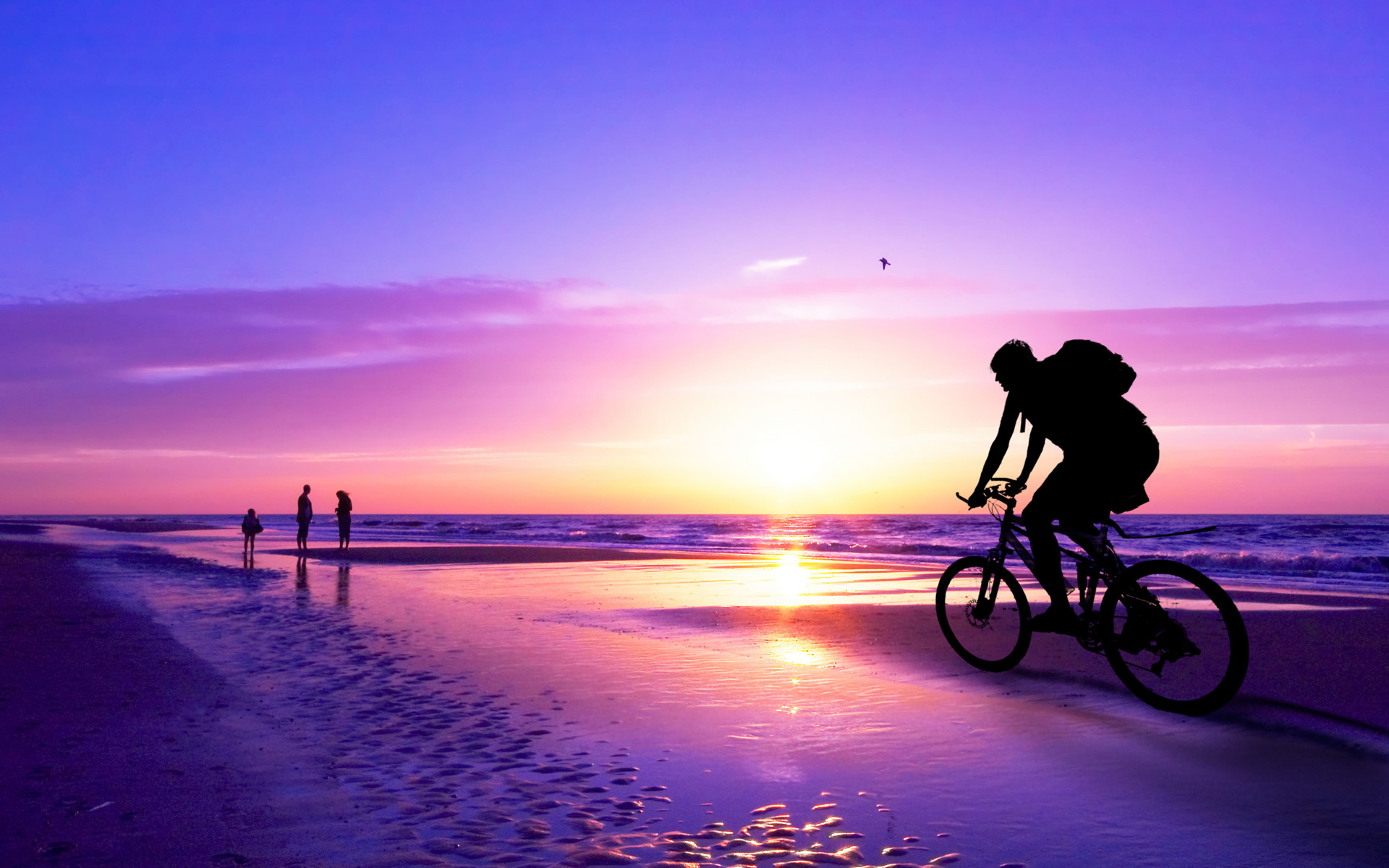 vehicles bicycles bikes sports people nature ocean sea seascape waves beaches path trail sidewalk boardwalk sky clouds sunset sunrise color