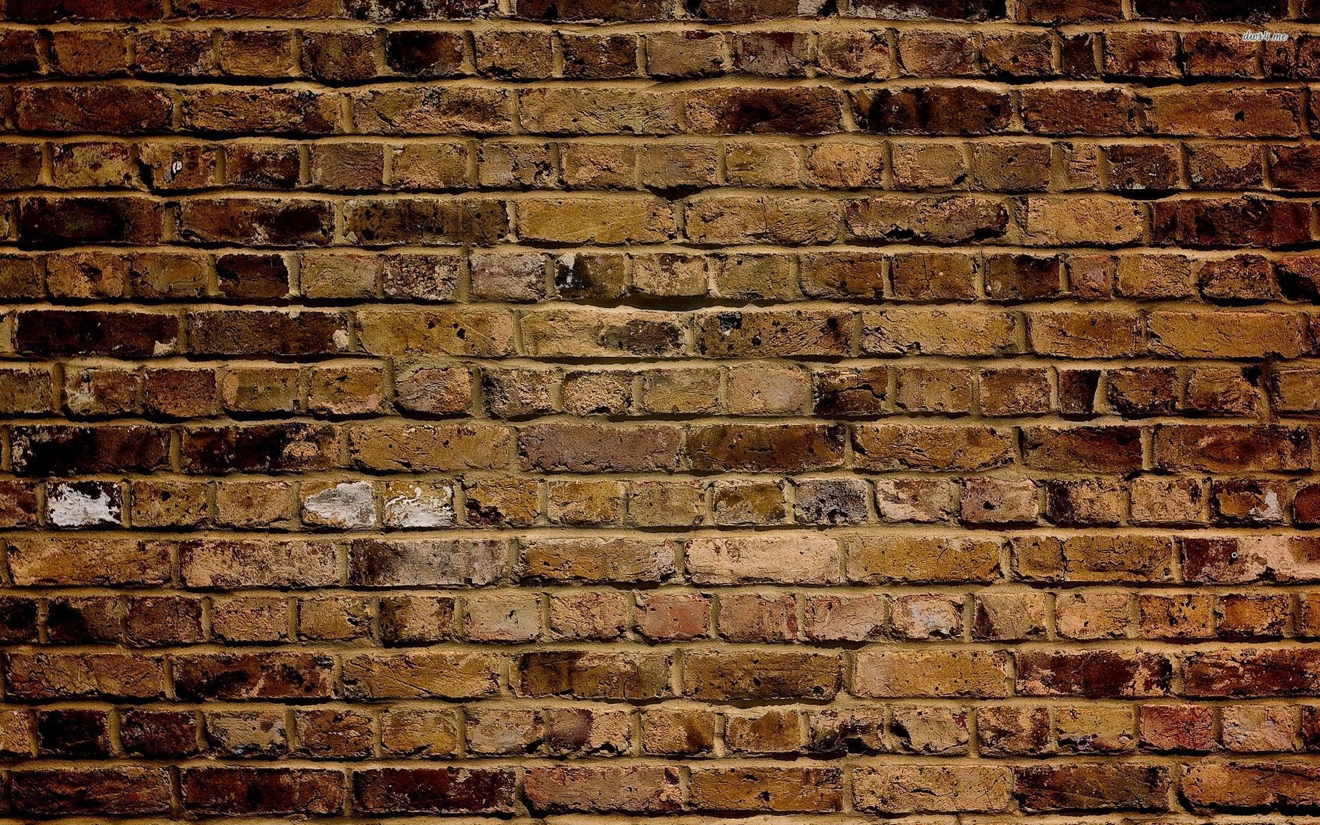 wall bricks