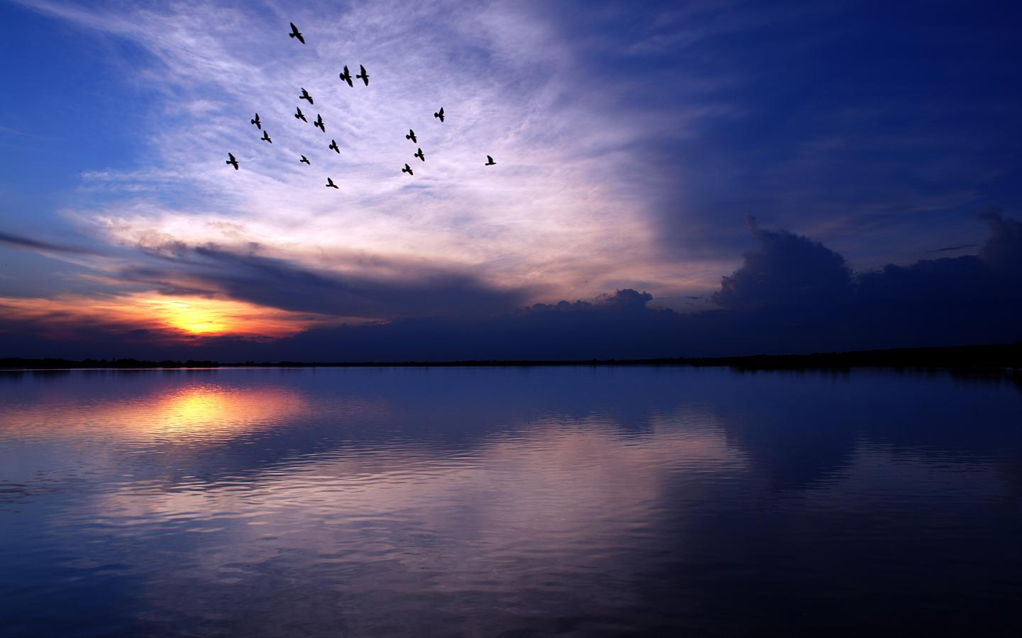 water landscapes birds lakes