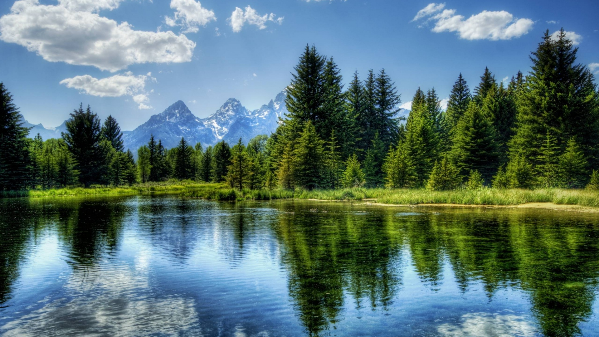 water landscapes trees lakes