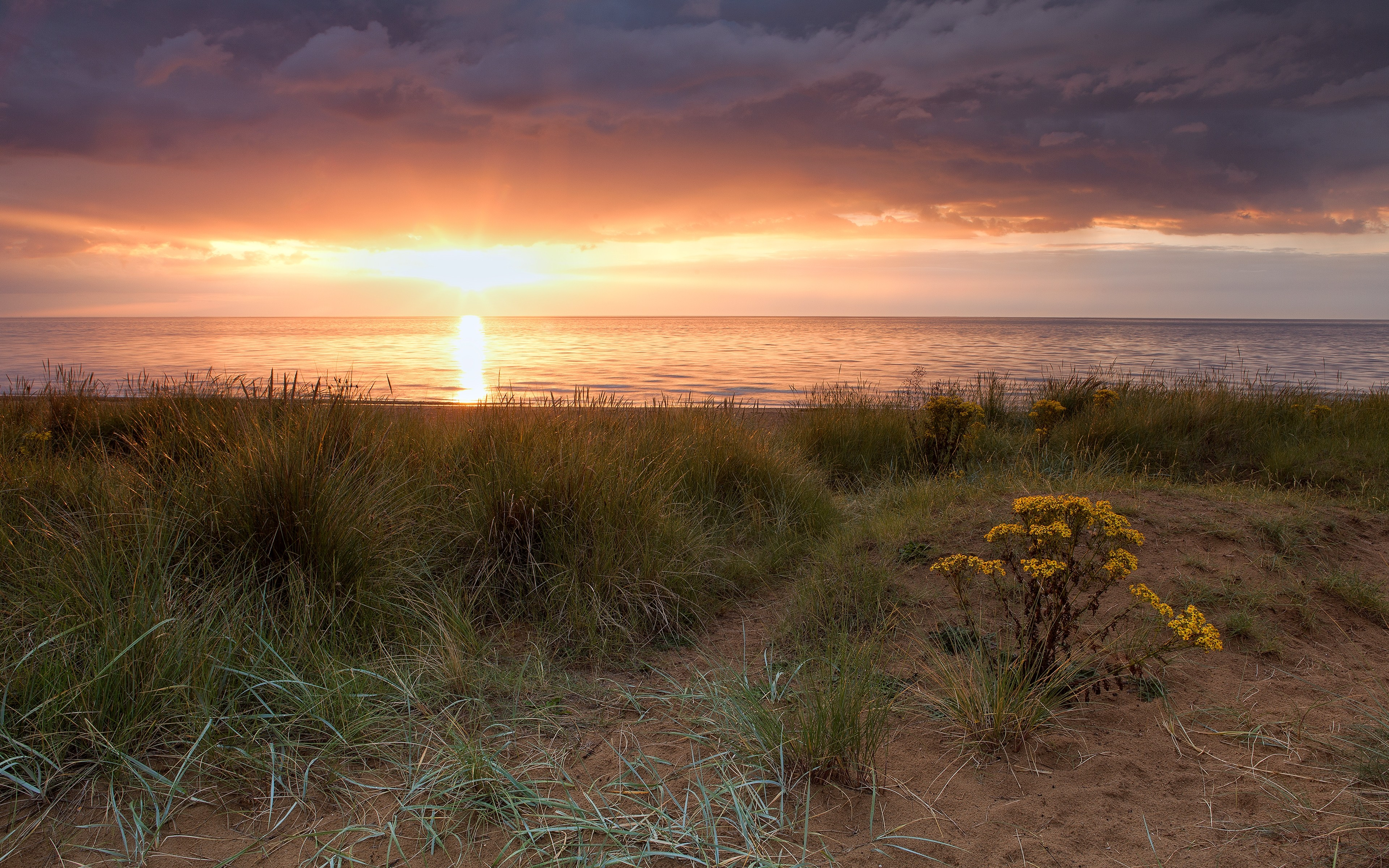 water sunset ocean clouds landscapes nature coast Sun England grass United Kingdom sea