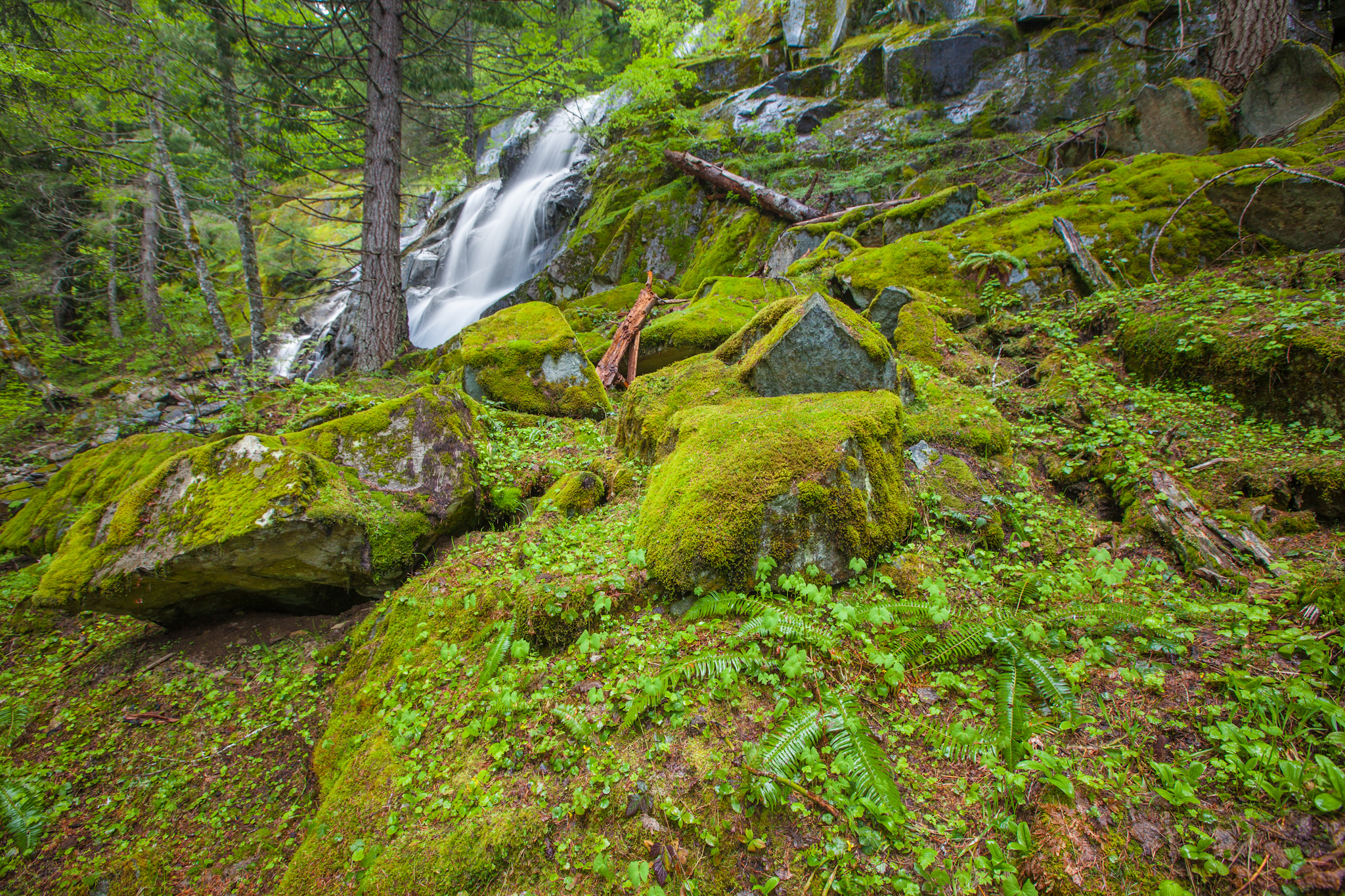 waterfall forest rocks nature     g