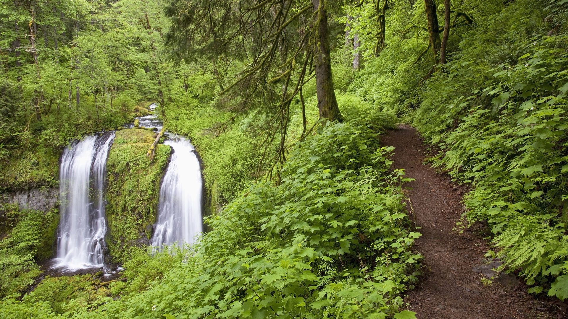 waterfall path trail rivers people
