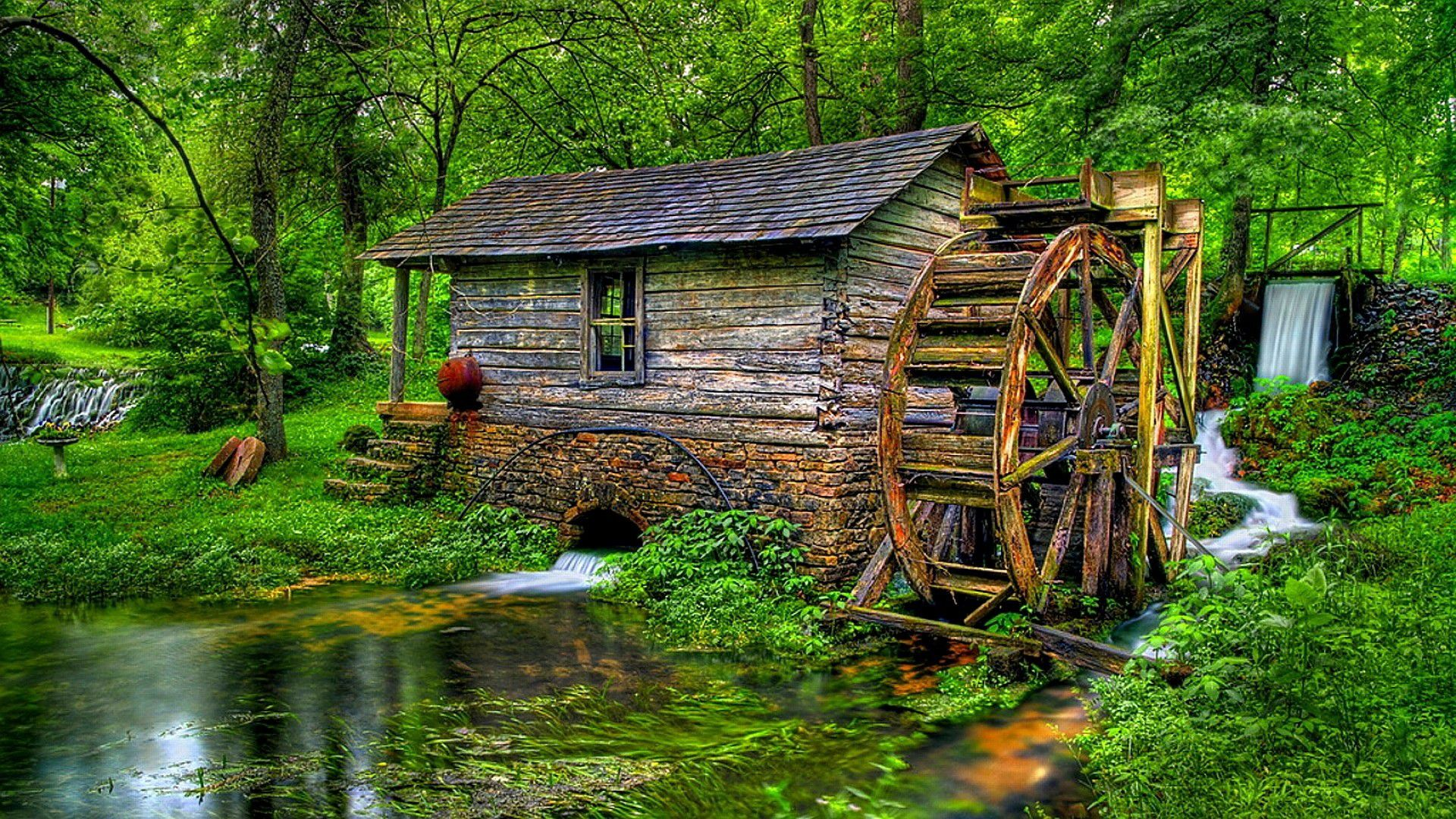 Watermill in the forest