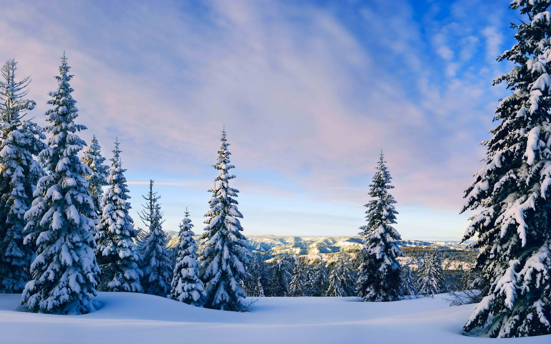 winter mountains hills trees snow landscape