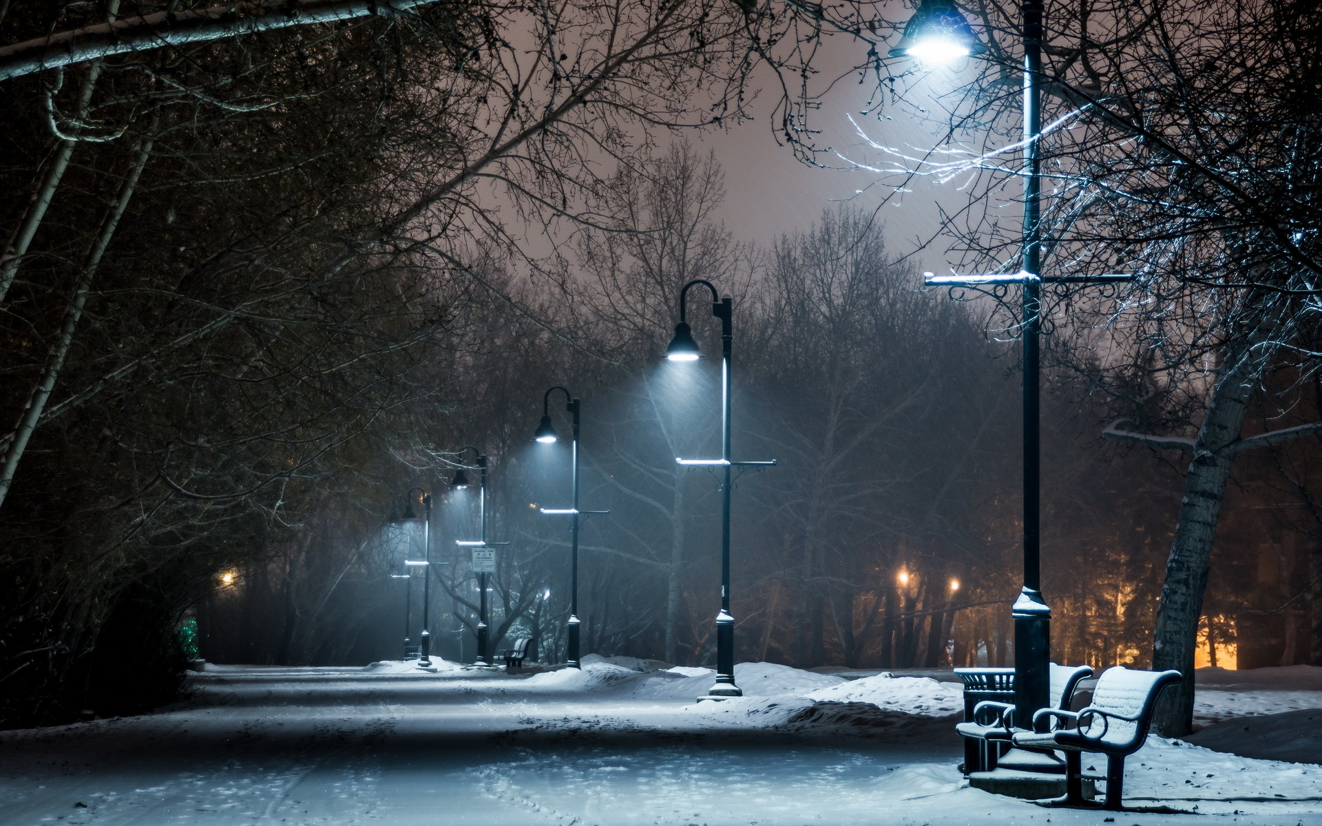 Winter Snow Bench Lights