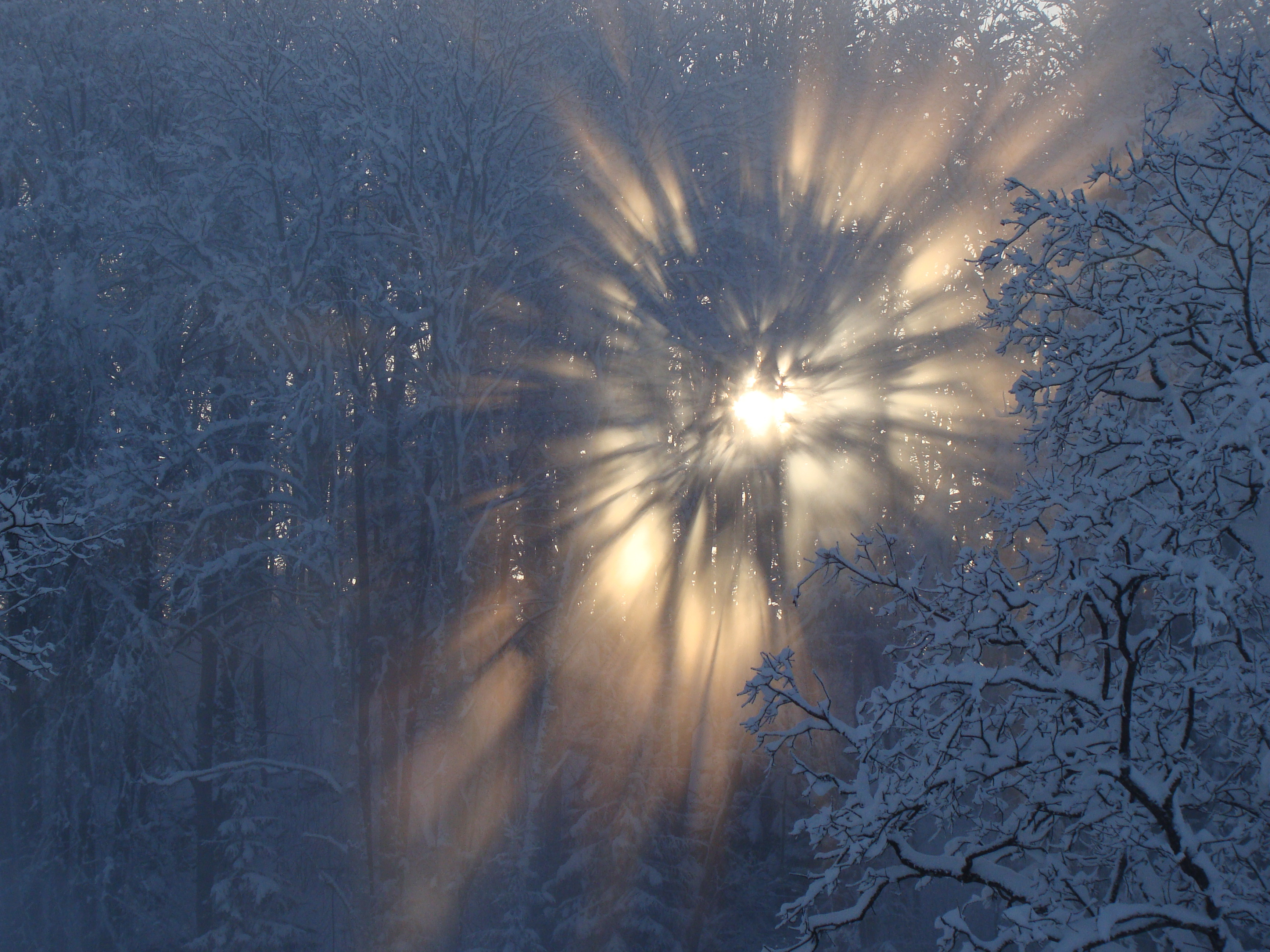 winter snow sun latvia
