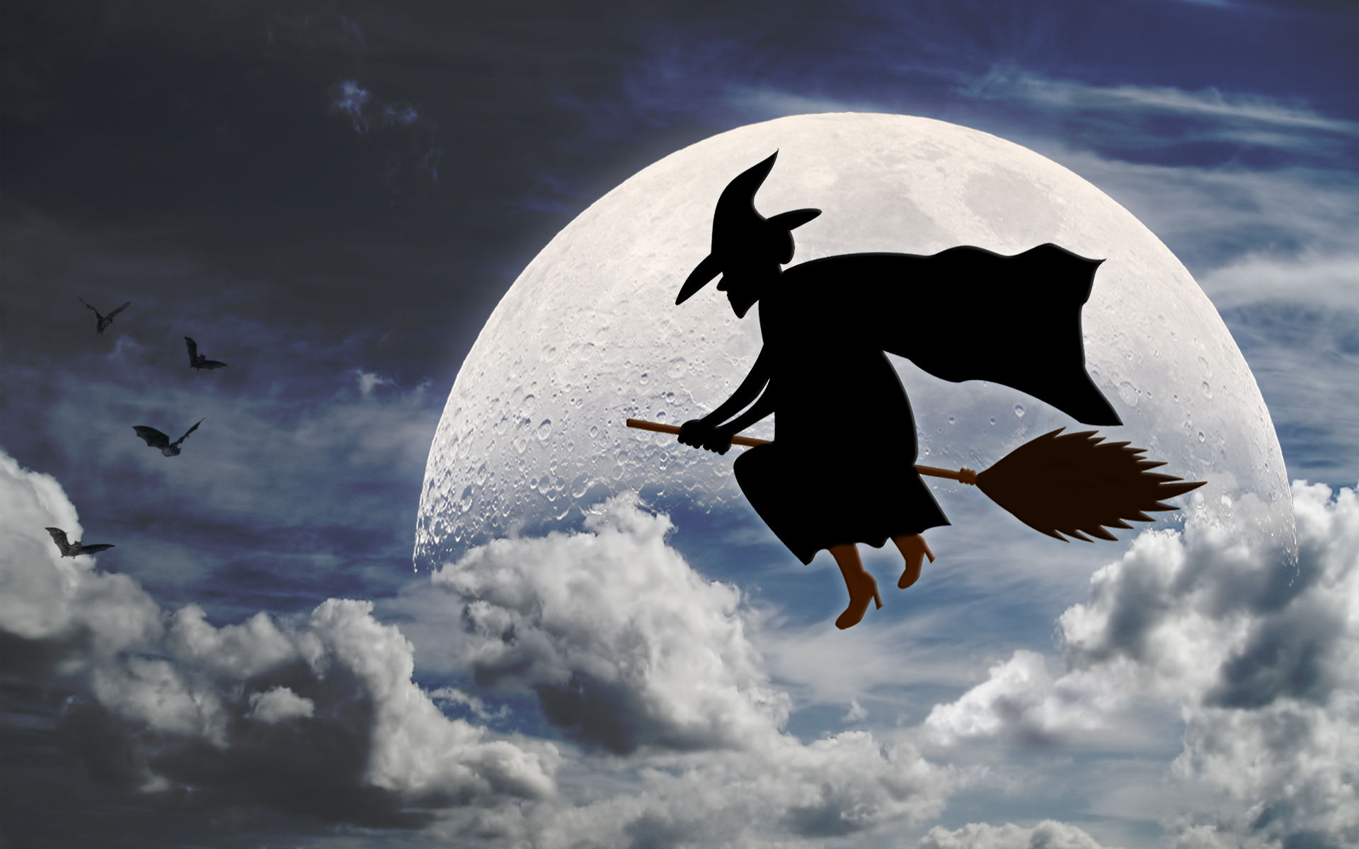 Witch Fly Broom