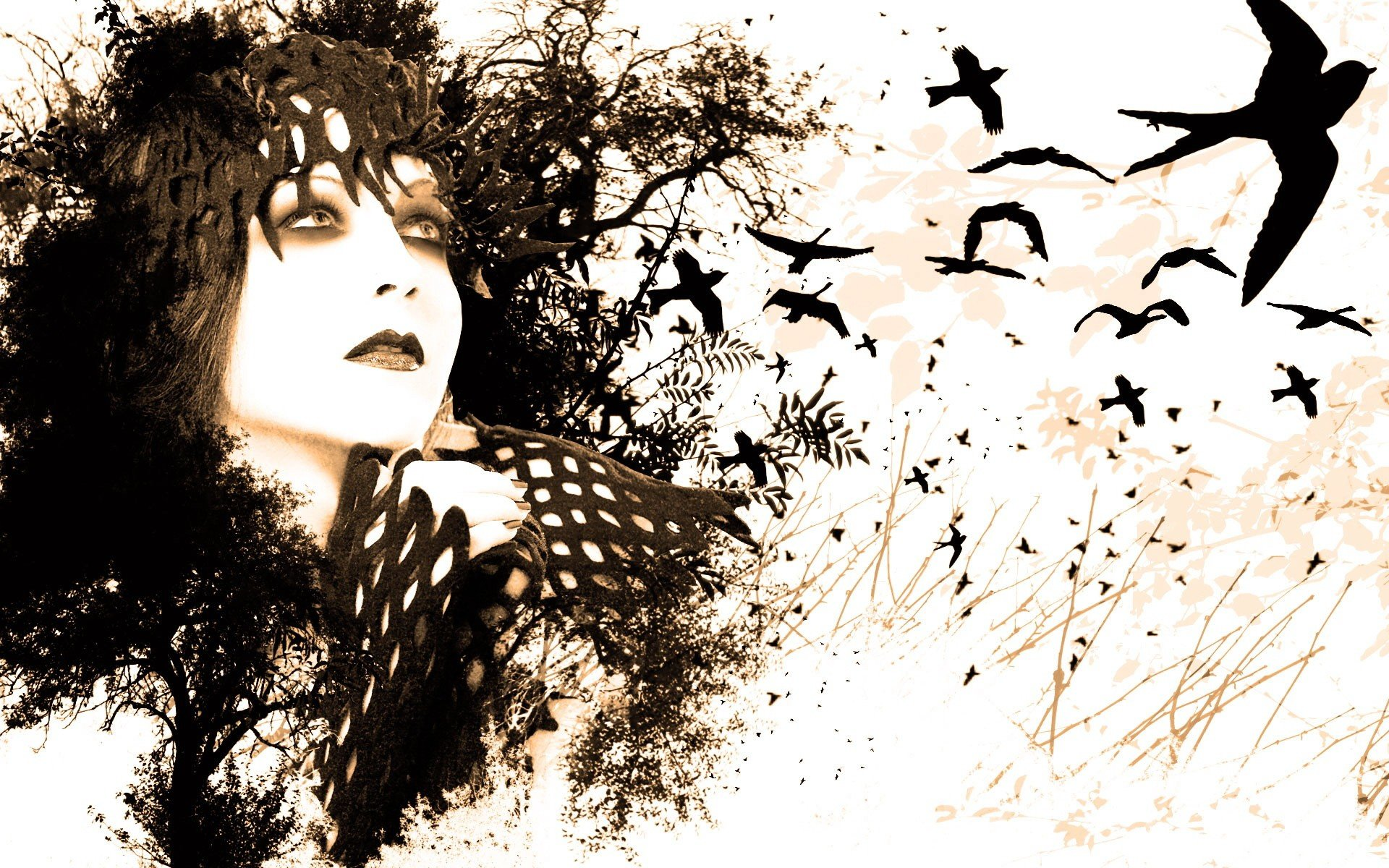 women eyes black white birds paint drawings white background