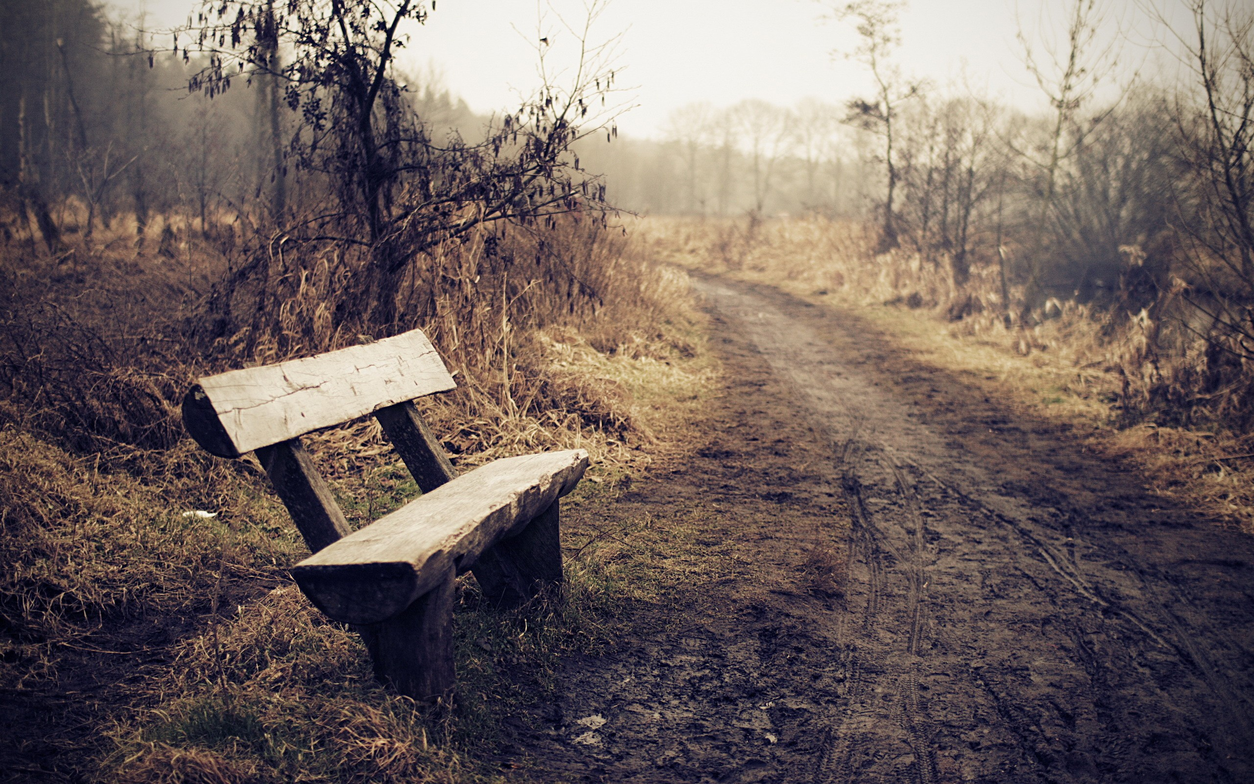Wooden bench on an off-road route