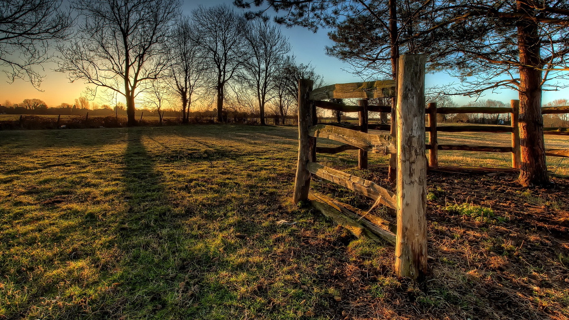 Wooden fence on the field
