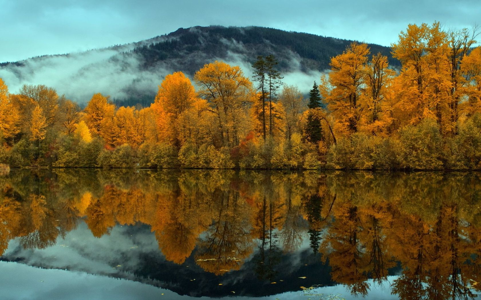 Yellow forest reflecting in the river